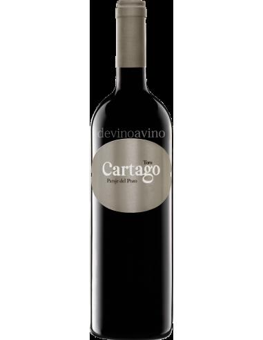 Cartago 2016
